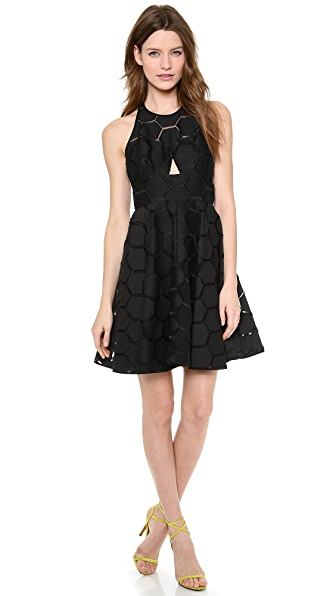 Milly Sheer Overlay Dress