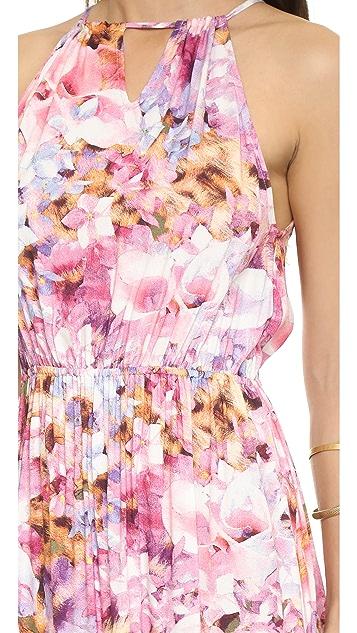 MINKPINK My Sweet Garden Maxi Dress