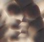 Beige Tortoise/Rose Mirror