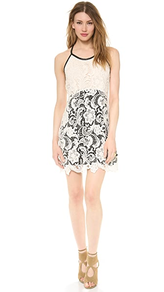 Madison Marcus Primp Lace Dress