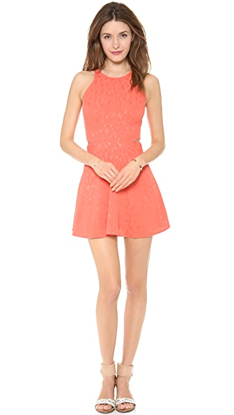 Myne Daria Cutout Dress