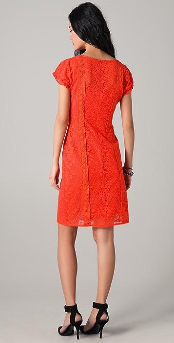 Nanette Lepore Lion Tamer Lace Dress