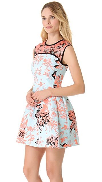 Nanette Lepore Club Mix Dress