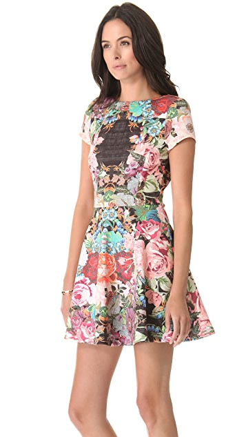 Nicholas Tapestry Print Scuba Skater Dress