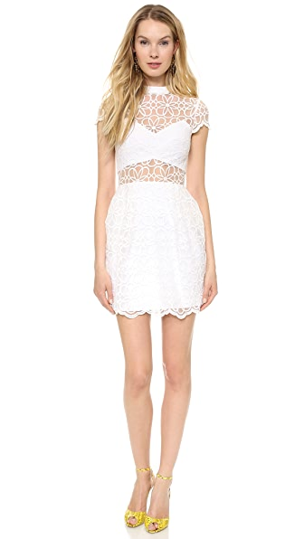 Nicholas Organza Lace Tulip Dress