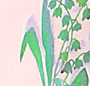 Rose Pale Vert
