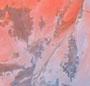 Pegasus Tie Dye