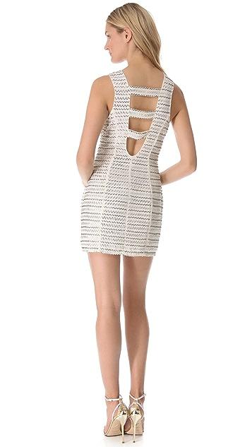 Parker Ivy Dress