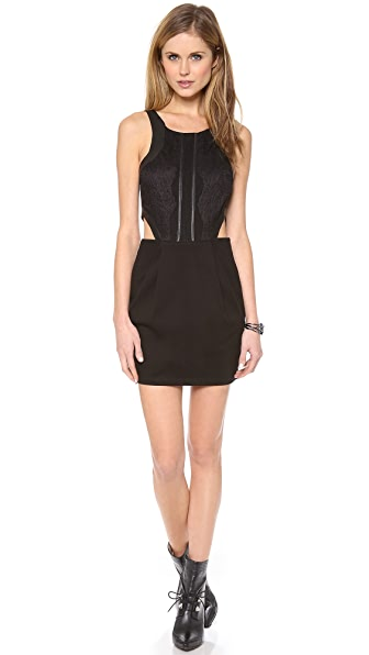 PJK Patterson J. Kincaid Lace Bodice Minx Dress