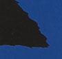 Bright Cobalt/Black