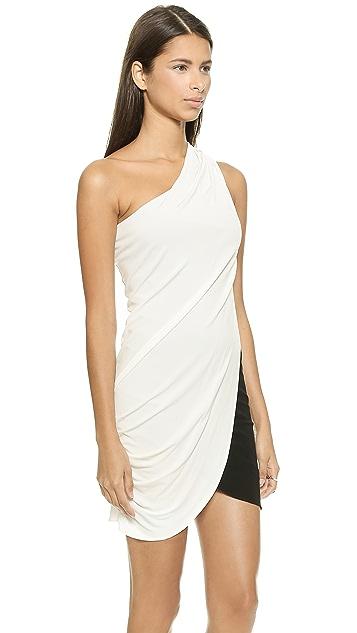 Ramy Brook Jane One Shoulder Dress