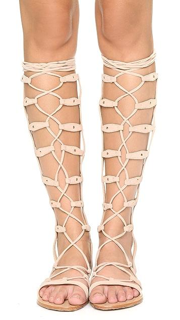 Raye Shanna Tall Gladiator Sandals
