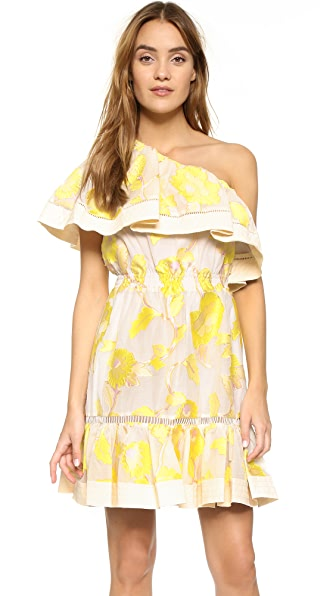 Rebecca Taylor Ella One Shoulder Ruffle Dress