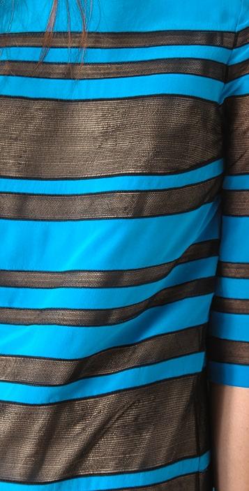Robert Rodriguez Sheer Striped Shift Dress