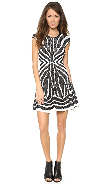 RVN Bengal Lace Jacquard Flare Dress