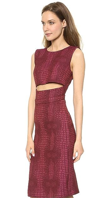 Sally LaPointe Jacquard Cutout Waist Dress