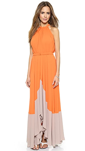 Saloni Iris Maxi Dress
