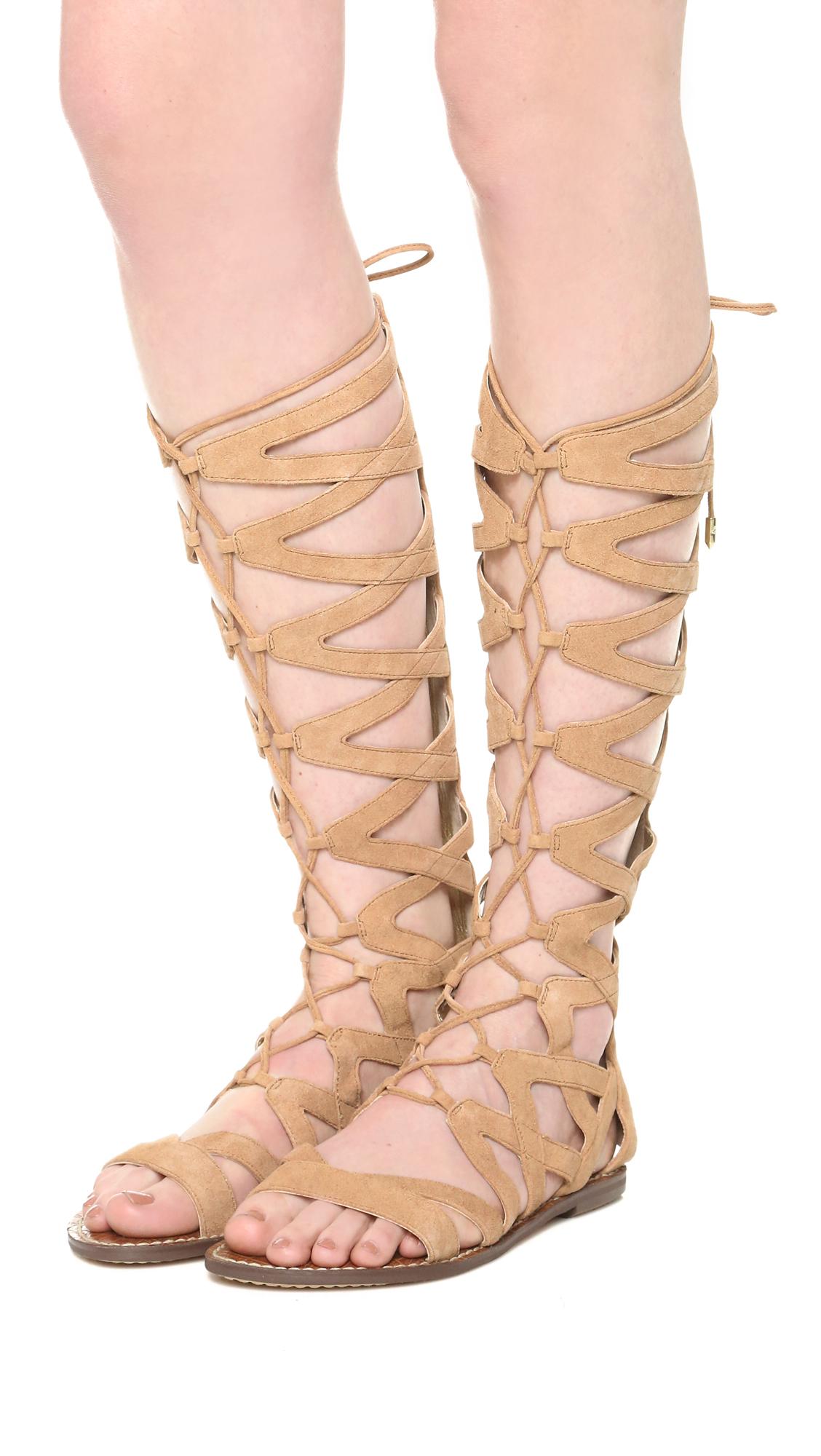 0445a6bfd76437 Sam Edelman Gena Tall Gladiator Sandals