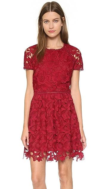 Saylor Valencia Dress