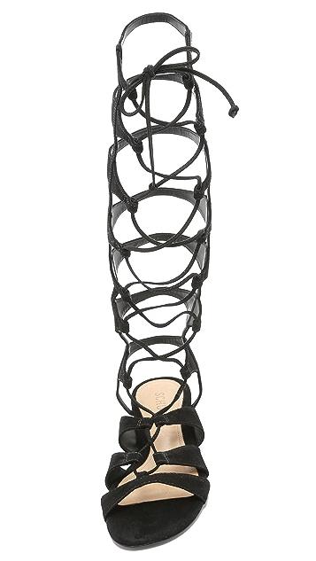 Schutz Violetta Tall Gladiator Sandals