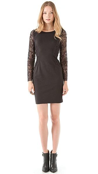 Sea Lace & Ponte Dress