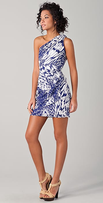 Shoshanna Julie Acacia Print Dress