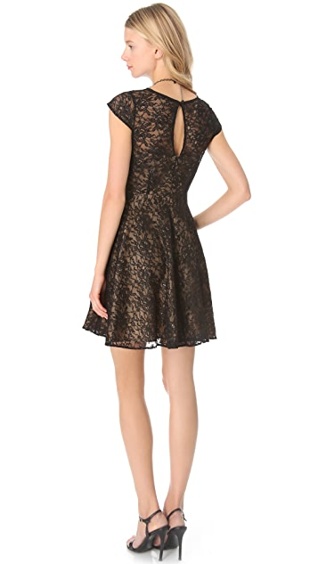 Shoshanna Lace Heidi Dress