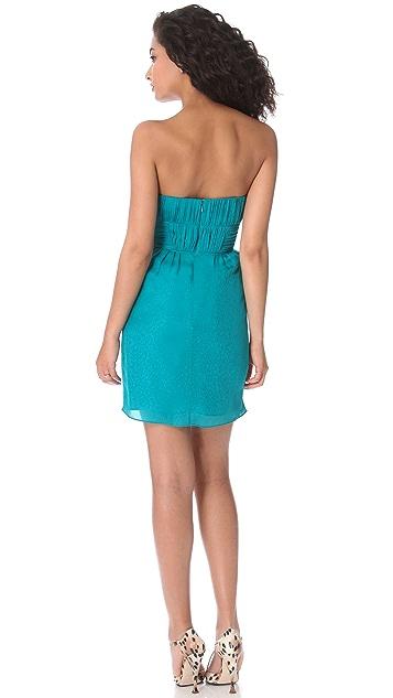 Shoshanna Nahla Strapless Dress