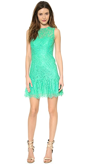 Shoshanna Lace Rainey Dress