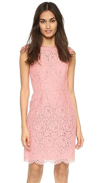 Kupi Shoshanna online i prodaja Shoshanna Olivia Dress Peach haljinu online