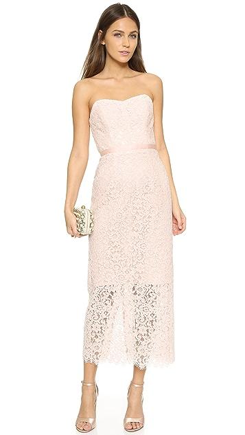 Shoshanna Ellie Lace Dress
