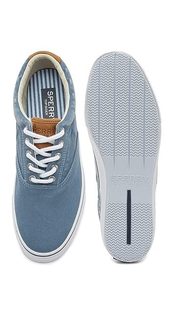 Sperry Striper LL CVO Sneakers