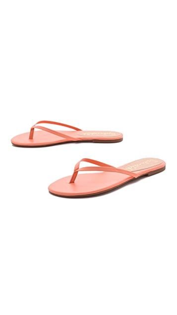 Splendid Madrid Flip Flops