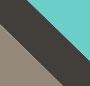 Grey Tortoise Turquoise/Grey