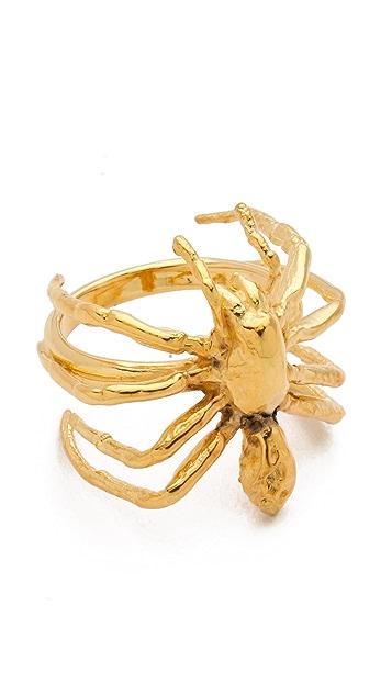 TOM BINNS Spider Ring