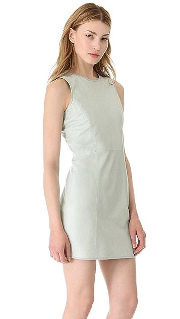 Theyskens' Theory Dimo Nexcel Dress