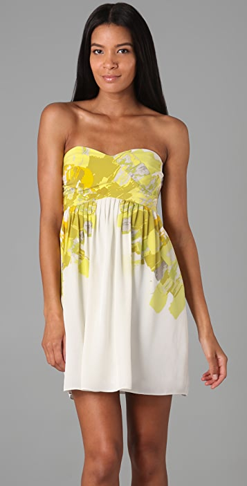 Tibi Painted Blossom Strapless Dress