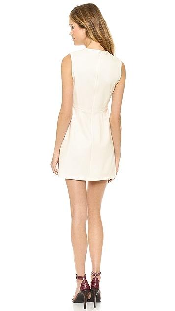 Tibi Sleeveless Embroidered Dress
