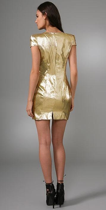 Torn by Ronny Kobo Hilary Dress