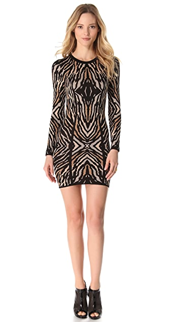 Torn by Ronny Kobo Emma Long Sleeve Dress