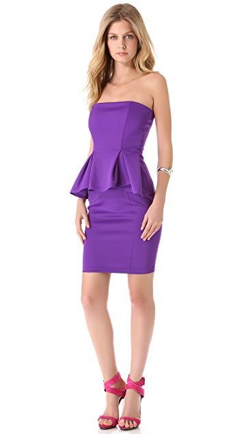 Torn by Ronny Kobo Camile Scuba Dress