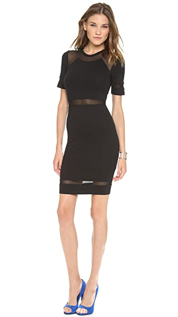 Torn by Ronny Kobo Lourdes Mesh Dress