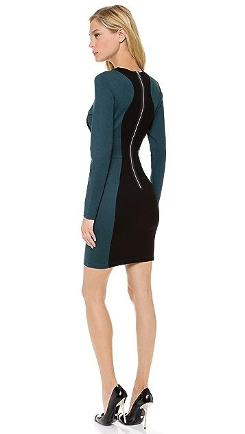 Torn by Ronny Kobo Shiran Long Sleeve Dress