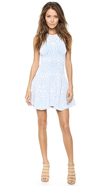 Torn by Ronny Kobo Tina Dress