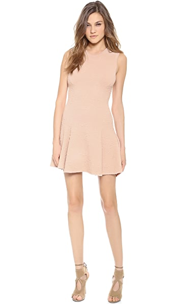 Torn by Ronny Kobo Alexandra Dress