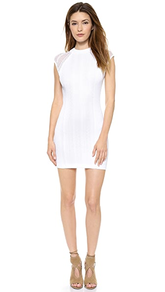 Torn by Ronny Kobo Rosalind Lace Dress