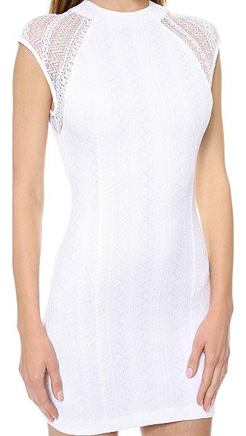 Torn by Ronny Kobo Rosalind Lace Dress
