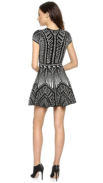 Torn by Ronny Kobo Vivienne Jacquard Dress