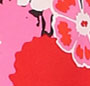 Berry Dianthus