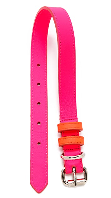 Ware of the Dog Medium Dog Two Tone Leather Collar